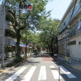 駅まで続く桜並木